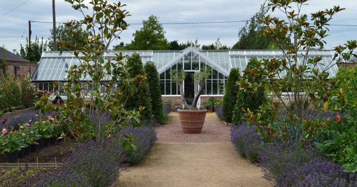 Victorian Greenhouse